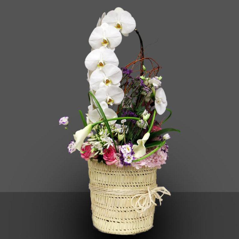 Orchid With Mixed Flowers