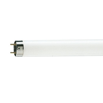 Philips 4ft 36w Tube Light
