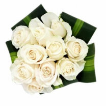 Bouquet of 10 white roses