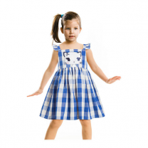 Raw Chirpie Pie Girls Blue Checked A-Line Dress