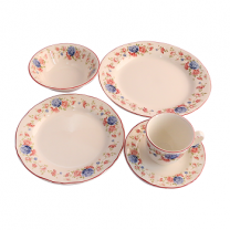Claytan Cottage Roses 20 Pcs Dinner Set (U) - Gift Pack