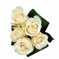 Bouquet of 5 White Roses
