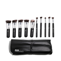 AOA 10-piece Hi-def Brush Set + Brush Roll
