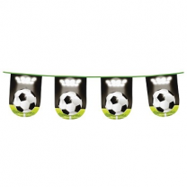 3d Bunting Football