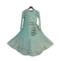 Fayon Kids Blue Lucknowi Choli with Lehenga